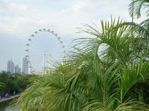 Singapore Flyer panorāmas rats