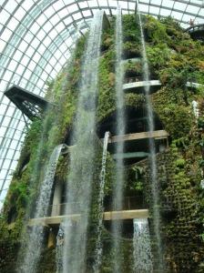 Tropisko mežu paviljons